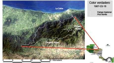Map of Pico Bonito Project Area